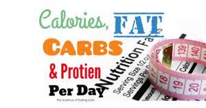 calories from protein carbohydrates and fat