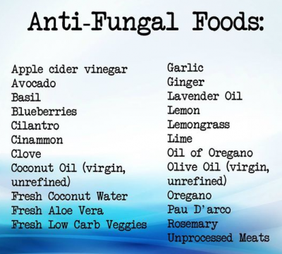 anti fungal foods