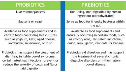 probiotics and prebiotics supplements