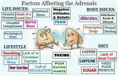 adrenal fatigue supplements